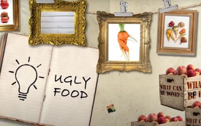@Financial Times, July 8, 2020, produced by Archie Hall Every year, around 1.3 billion tonnes of food is wasted, enough to end world hunger many times over. But critics say ugly food is seldom actually thrown away, and there are more effective ways to fight waste.Video Clip: https://foodrevolution.ft.com/videos/ugly-food/